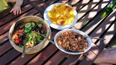 Carne desmechada & arepas